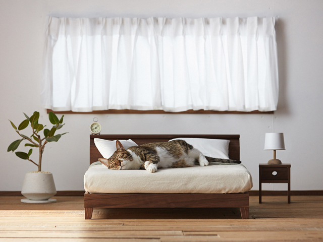 RAFFINE BED FOR CAT